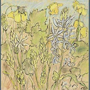 Welsh Poppies & Camassias